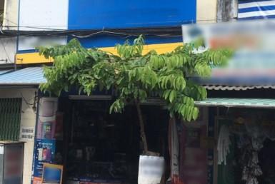 Nhà đường Tôn Đản quận 4 5.31x21.5m